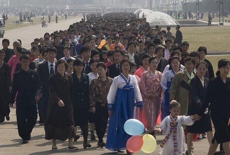 Kimjongilia Festival