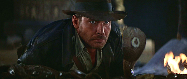 Raiders Of The Lost Ark Reflection