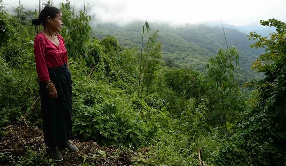 Ng Chhaidy The Jungle Girl