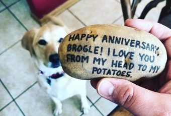 Potato Parcel